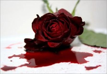 Sangre_de_rosa_by_LayraBlack - copia_thumb[3]