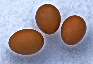 eggs on ice